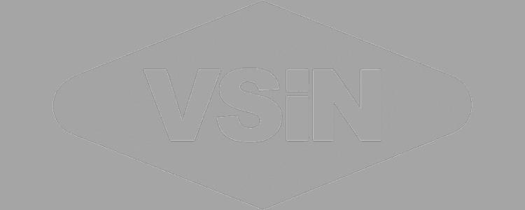 vsin_logo_grey-new